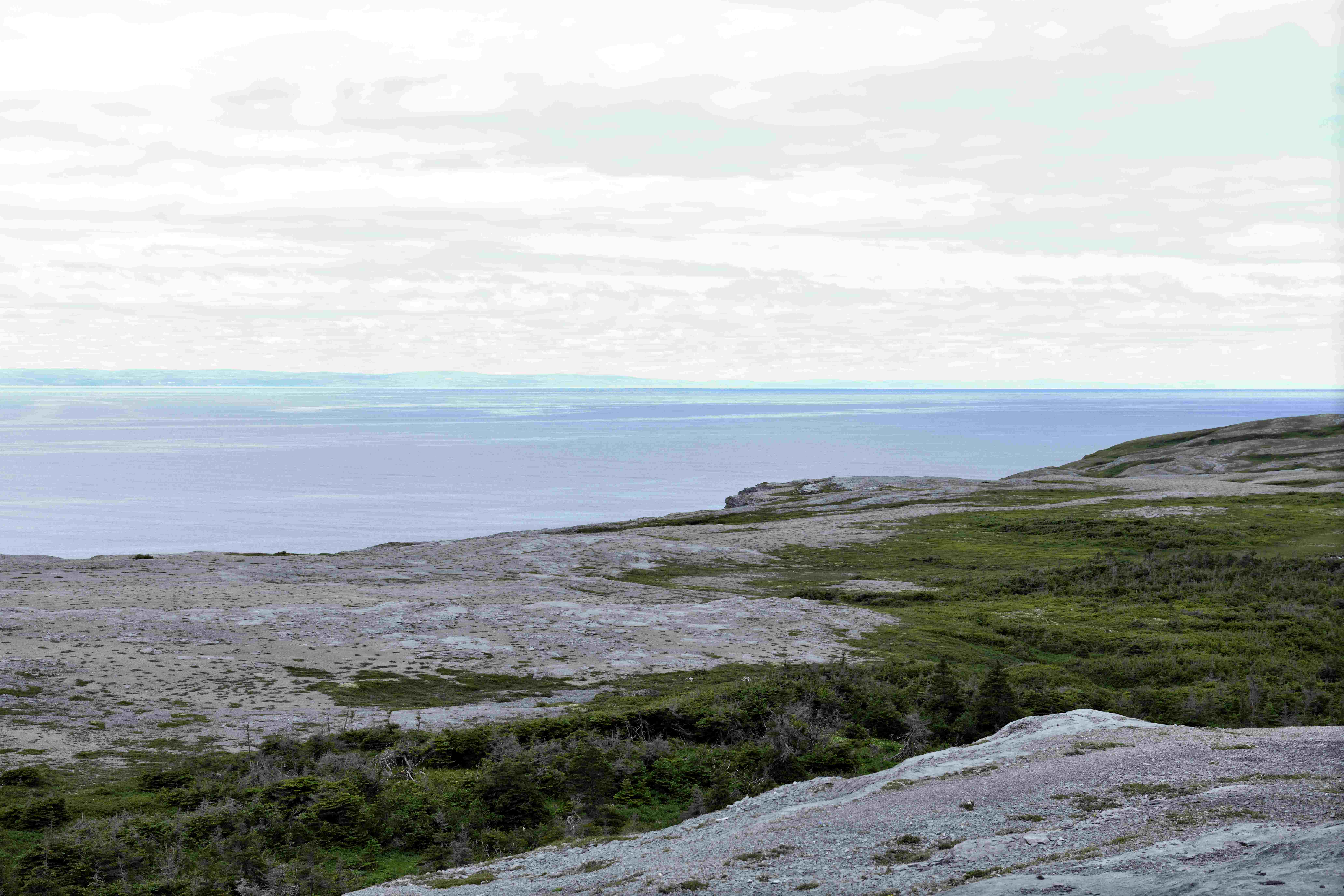 Looking over at Labrador